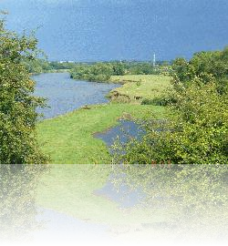 River Eden from Beaumont Parish Hall
